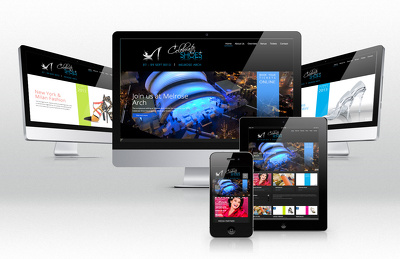 Develop a Responsive & Seo Friendly Holding page/ Single page wordpress website