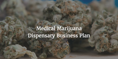 Provide a medical marijuana dispensary business plan sample