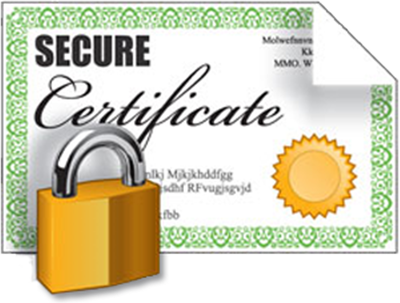 Provide a Professional Opinion letter for SSL site verification