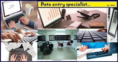 Do fast and accurate  data entry in 20$
