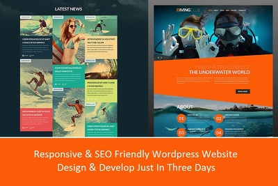 Provide a responsive, fast loading and SEO friendly Wordpress Website just in 3 days