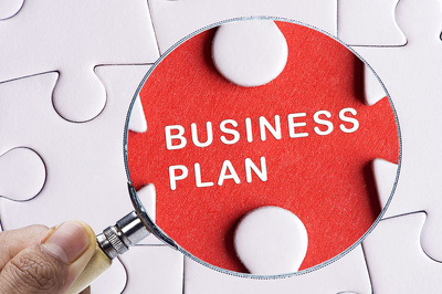 Prepare investor ready business plan with 5 year financials