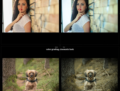 Will professionally retouch 5 photography edit image within 24 hours only