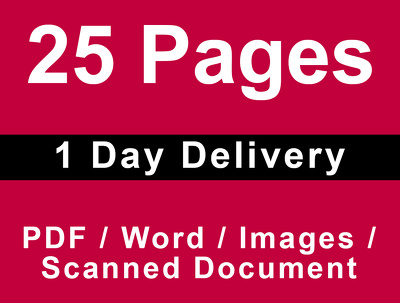 Manually type Upto 25 pages of PDF to MS Word or MS Excel 1 day Delivery