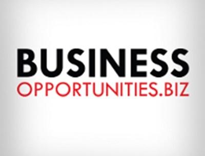 Publish a Guest Post on Business-opportunities.biz [DA 67, PA 72]