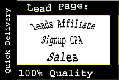 Create landing pages- Instapage, leadpages, clickfunnel and wordpress