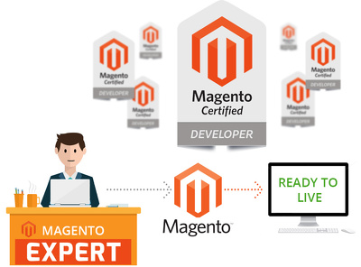 Create Magento store with your described features by Magento Certified Developer Plus