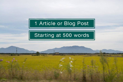 Write a 500 Word Article or Blog Post, (With Native English YAY!)