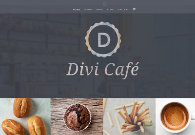 Create WordPress Website by using Divi Theme
