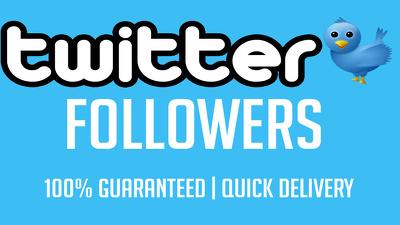 Provide you Instant 1000 USA Twitter Folowers
