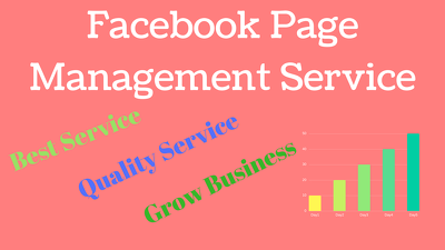 Facebook page manage 2hr/day to grow business