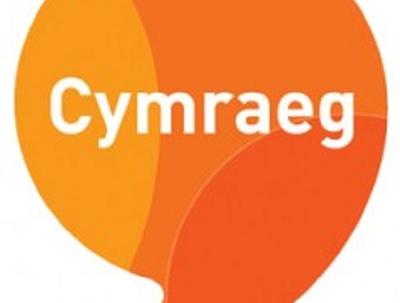 English  Welsh translation up to 500 words