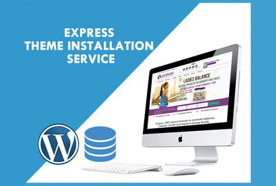 Install a WordPress theme and setup like demo - Express delivery