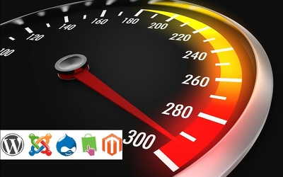 Speed Optimization in Wordpress/Joomla/Drupal/Magento/Prestashop website