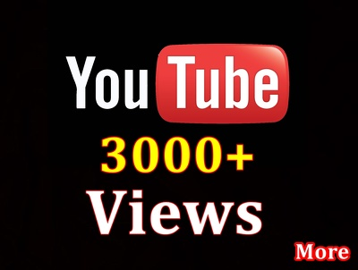 Provide 3000 Real YouTube Views OR 3000 HQ Twitter followers  (split-able)