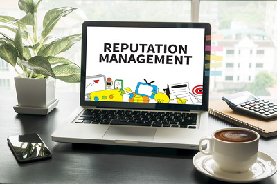 Provide 1 hour Reputation Management Consultancy to Clean up bad press build brand up