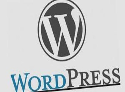 Install Wordpress website on your hosting,addon domain name and point DNS