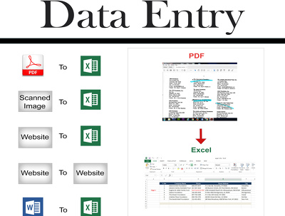Accurately Data Entry in MS Excel or website to website Data Entry Service in 1 day