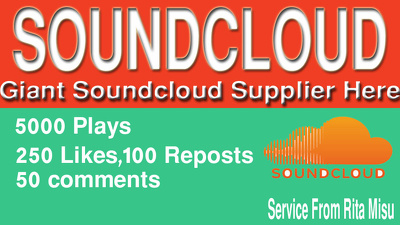 Provide you 5000 soundcloud Plays With 250 Likes100 Reposts 50 comments