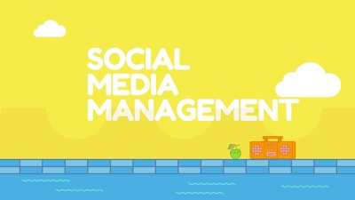 Provide a Fully Manual Social Media Management service on 5 platforms for 5 Days.