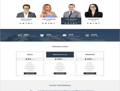 provide Responsive Website in wordpress