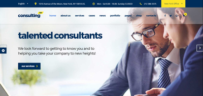 Develop Business Finance & Consulting Wordpress Website