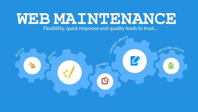 Provide 1 month maintenance of any eCommerce / business websites