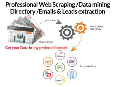 Data Mining and Web Scraping of 1,000 records from any Directory or Website