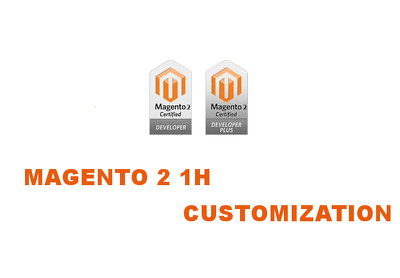 1 hour of consultation/customization to your magento 2 (VAT Inc)