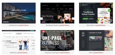 Provide a business website package, with fast unlimited hosting, premium template
