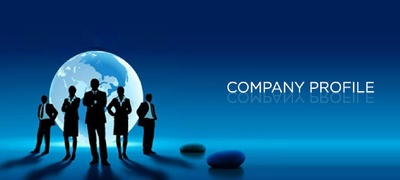 Write a professional company profile/business profile for your company