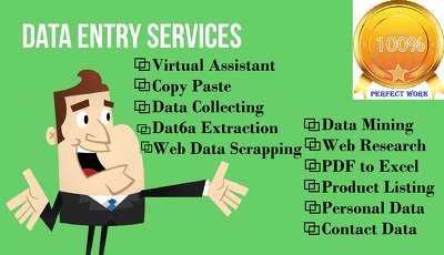 Do your any Data Entry and Web Research