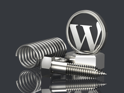 Build a proffesional  WordPress Website
