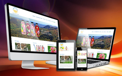 Build you a responsive Wordpress website that is search engine optimised