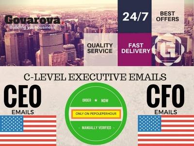 Provide database of decision maker (e.g. Owner, CEO, CFO, Pres, VP, Director) For USA