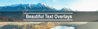 Add text and logo overlays to five of your images for your social media feed