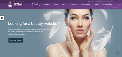 Build Spa & Beauty Salon WordPress website for online business