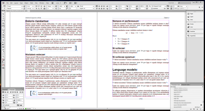Design the interior of a 200 page book in InDesign