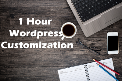 Provide 1 hour customization to your wordpress based website