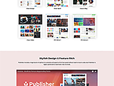 Customize any premium WP theme ForntEnd/BackEnd
