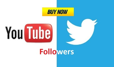 Provide 2000 HQ Twitter Followers OR 3000+ HR YouTube Views