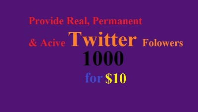 Real, Permanent and Active 1,000+ Twitter Followers