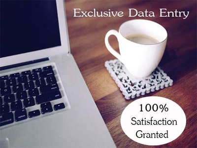Provide Excel Data Entry Service For 3 hours.