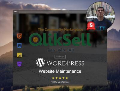 Make Wordpress Website Maintenance 30 mins