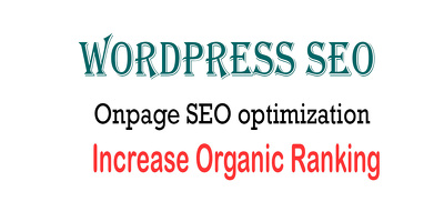 Offer Wordpress SEO Onpage optimization