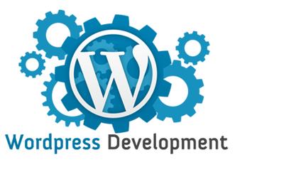 Wordpress Theme and Plugin Customisation
