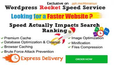 Provide Advanced Speed Optimization for WordPress Website With Google PageSpeed