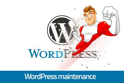 1 hour of WordPress maintenance