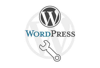 Provide WordPress Support for 1 Hour