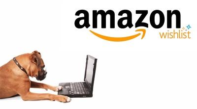 Do 1000 wishlist for amazon product ranking
